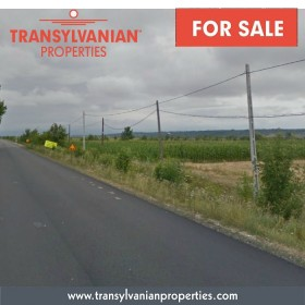 FOR SALE: Land for property development in Somcuta Mare - Transylvania | Price: 7 Euro / m²