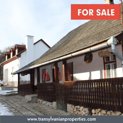 FOR SALE: Family home with guesthouse and fruitgarden in Zalan - Transylvania | Price: 97 500 Euro