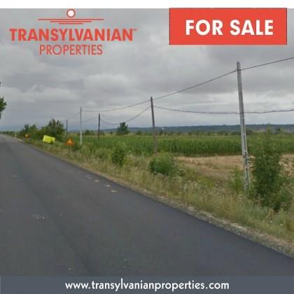 FOR SALE: Land for property development in Somcuta Mare - Transylvania | Price: 7 Euro / m²